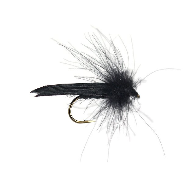 S1 Sedge - Black
