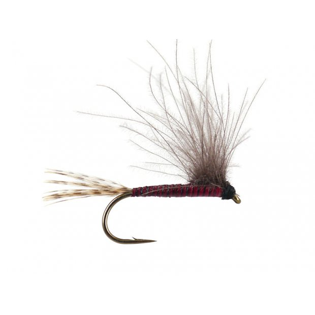 CDC BWO - Red