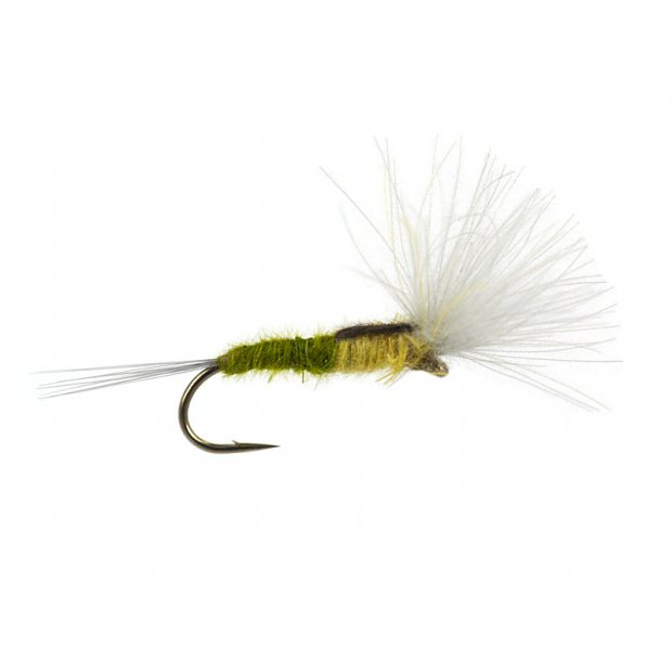 CDC Split Wing - Bwo