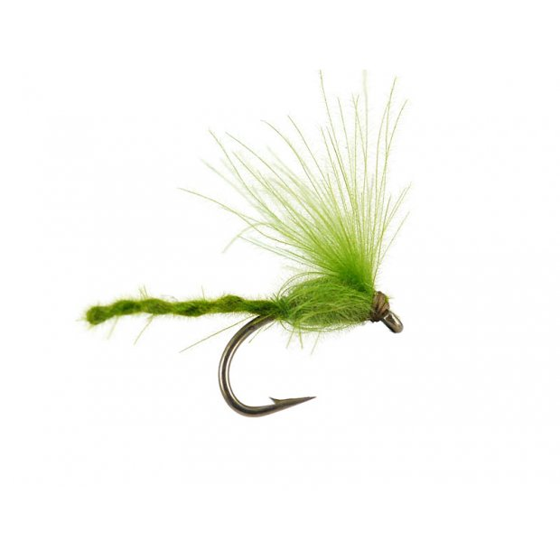 CDC Nyakinama - Medium Olive