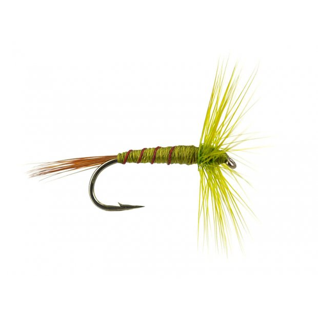 French PL Olive Ribbed