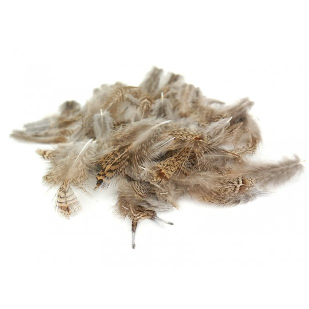 PARTRIDGE ENGLISH FEATHERS hotfly - 3 g - selected...