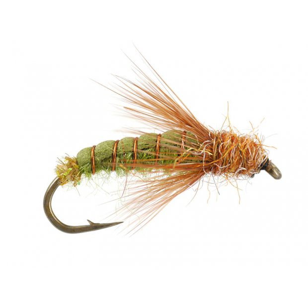 Emerger Sedge Pupa Olive