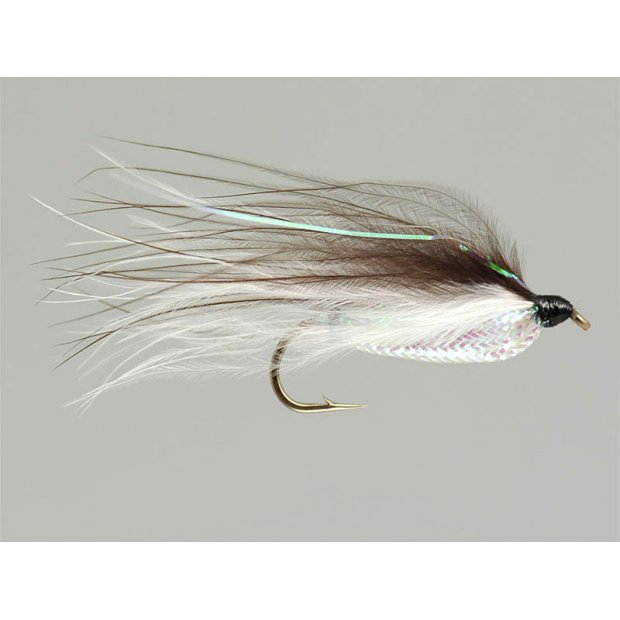 Rickards Shiner Minnow - Brown