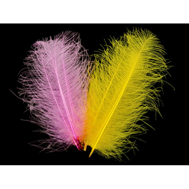 CDC FEATHERS SUPER SELECTED MAGNUM hotfly - 1 g